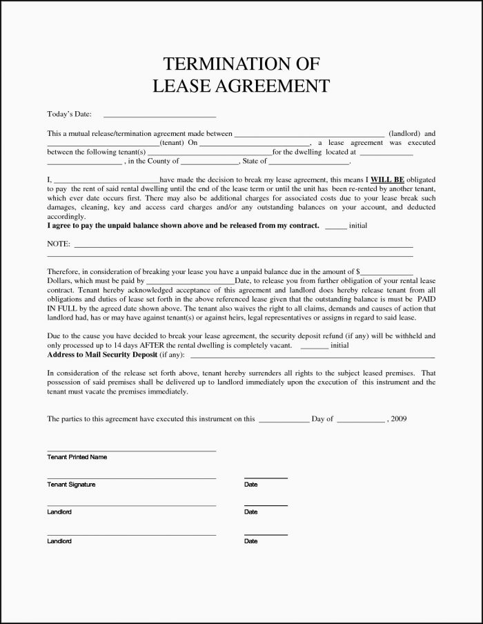 Blank Sublease Agreement Form