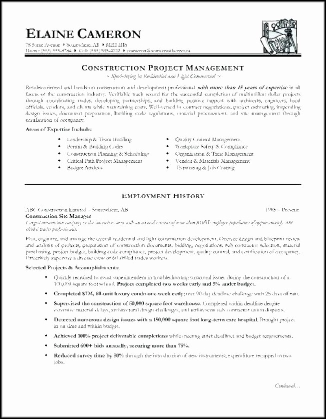 Construction Resume Templates For Microsoft Word