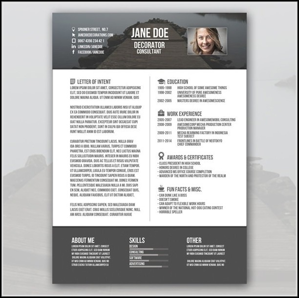 Free Creative Resume Templates For Freshers