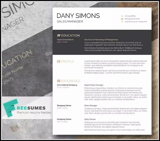 Free Modern Resume Templates For Word - Resume : Resume Examples ...