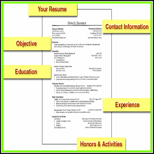 Resumes For Dummies Templates