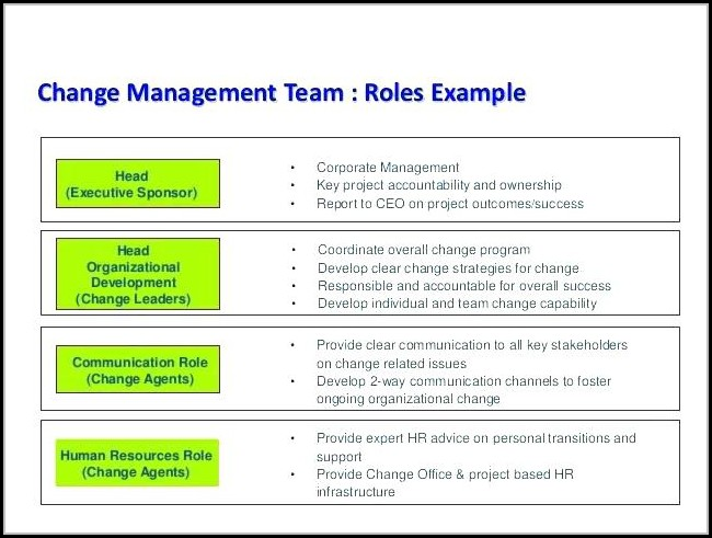 Chronic Care Management Care Plan Template