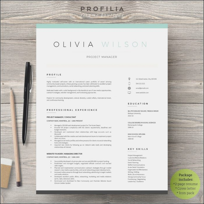 Modern Resume Template Free Word