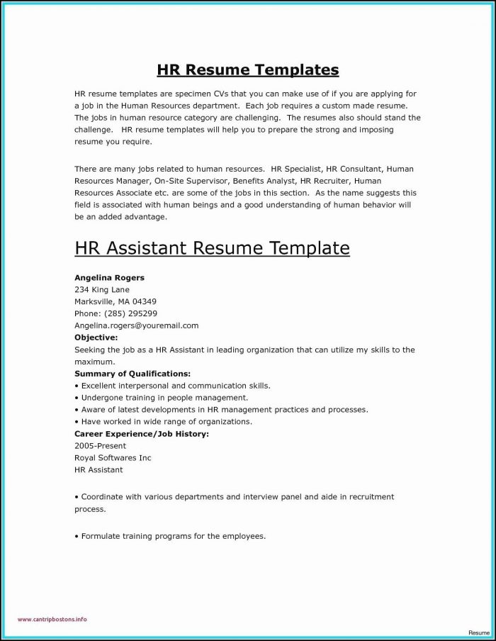 Resume Builder Template Free Microsoft Word