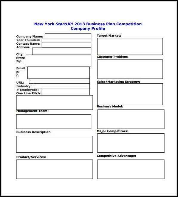 Small Business Startup Business Plan Template