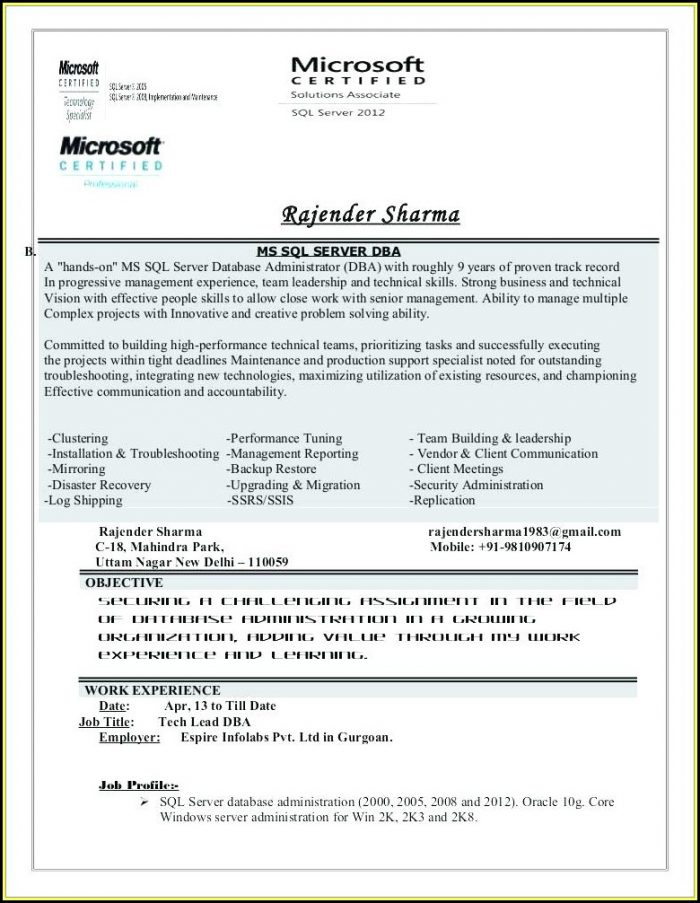 Creative Resumes Templates Word