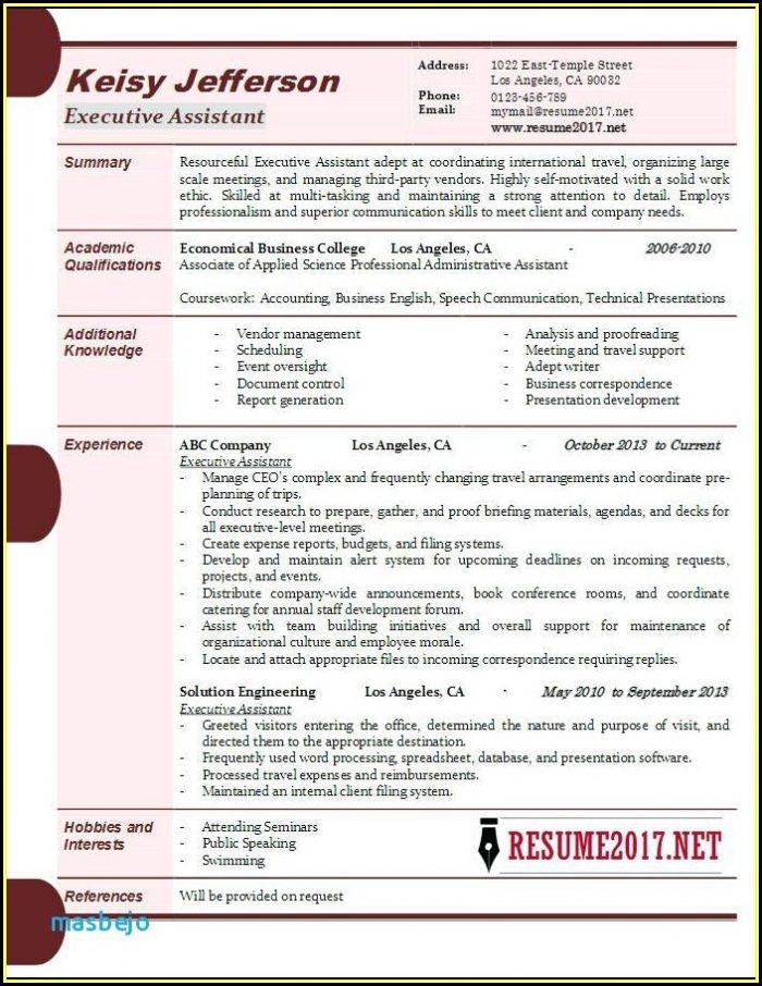 Executive Resume Examples 2017