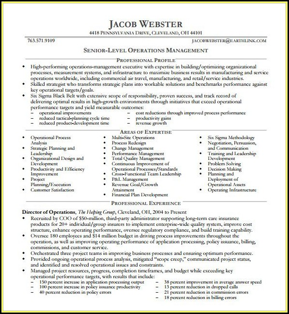 Executive Resume Examples Free