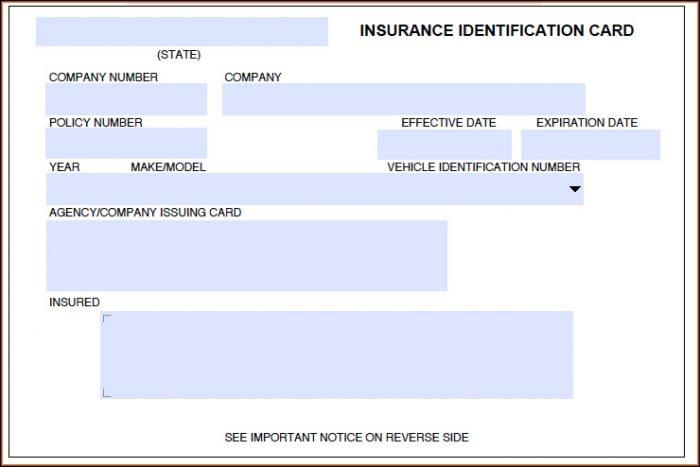 Fake Auto Insurance Template