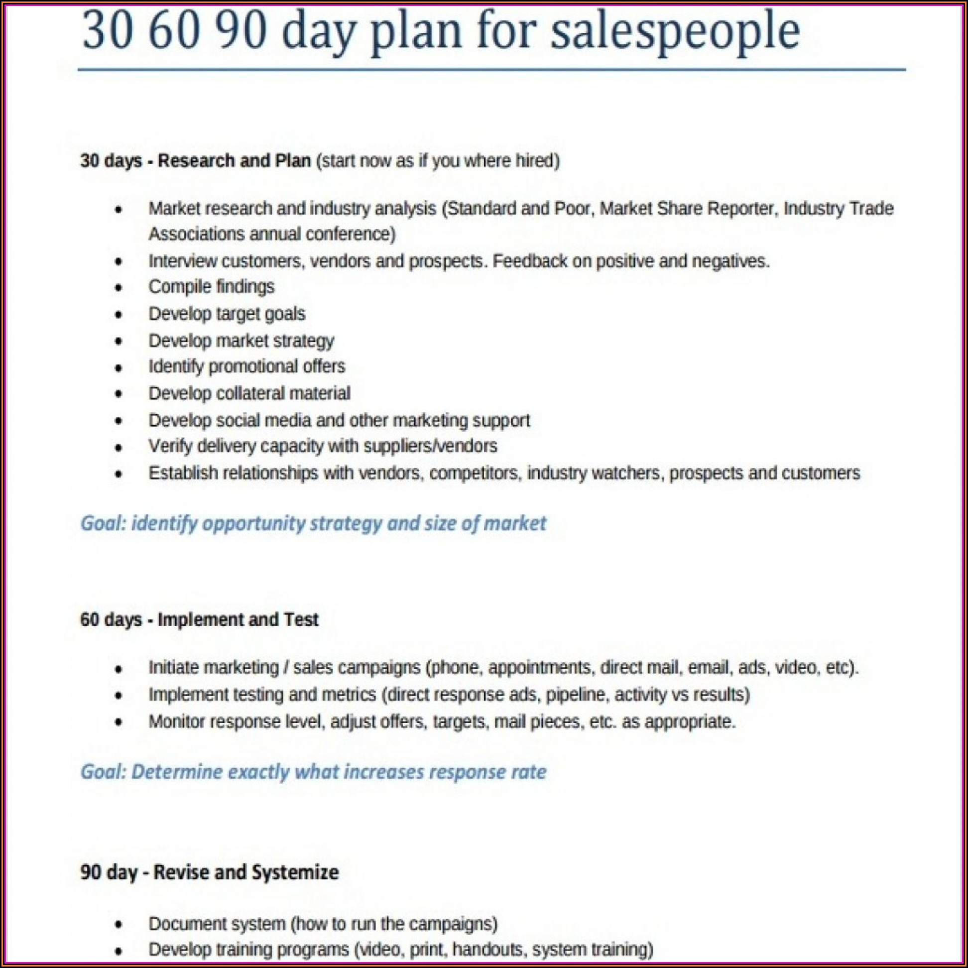 Free 90 Day Marketing Plan Template - Template 2 : Resume