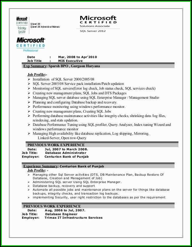 Mis Executive Resume Format Download