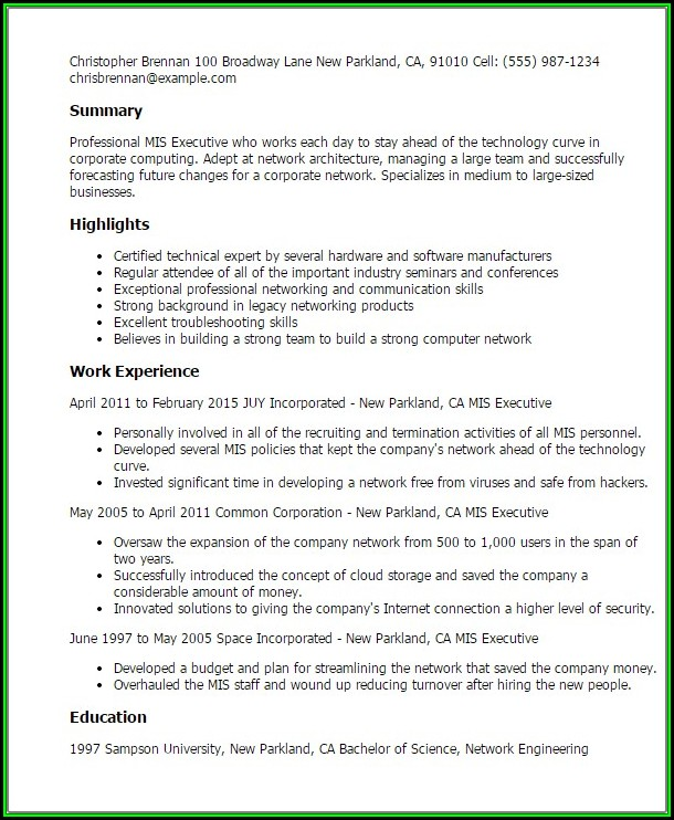 Mis Executive Resume Format In Word