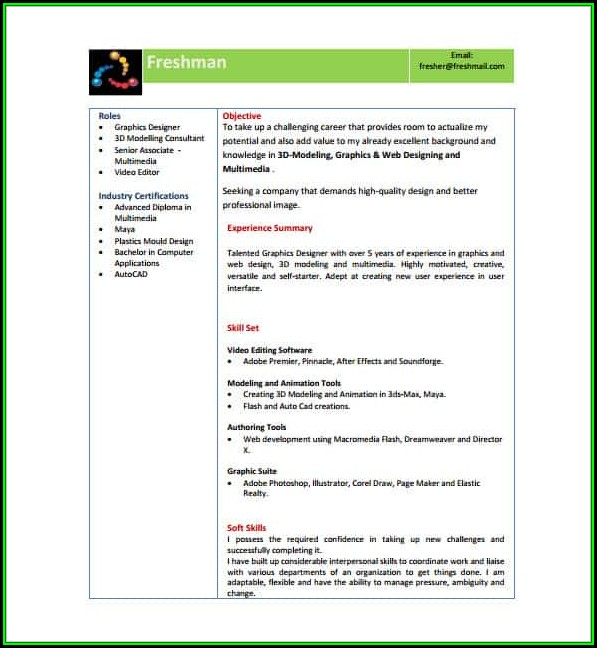 Modern Resume Template Free Download Pdf