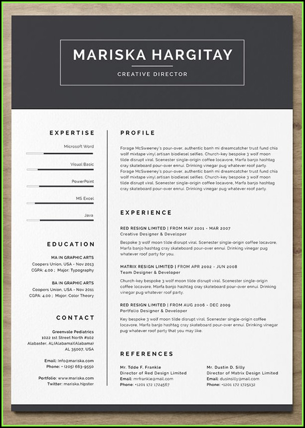 Cool Resume Templates