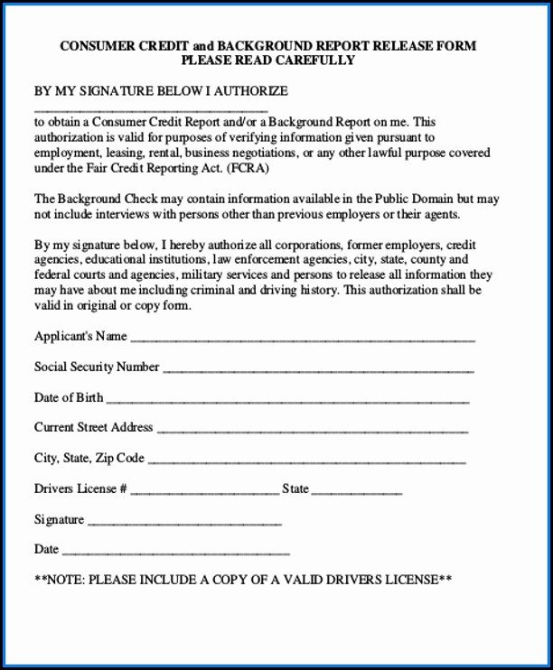 Free Background Check Authorization Form Template