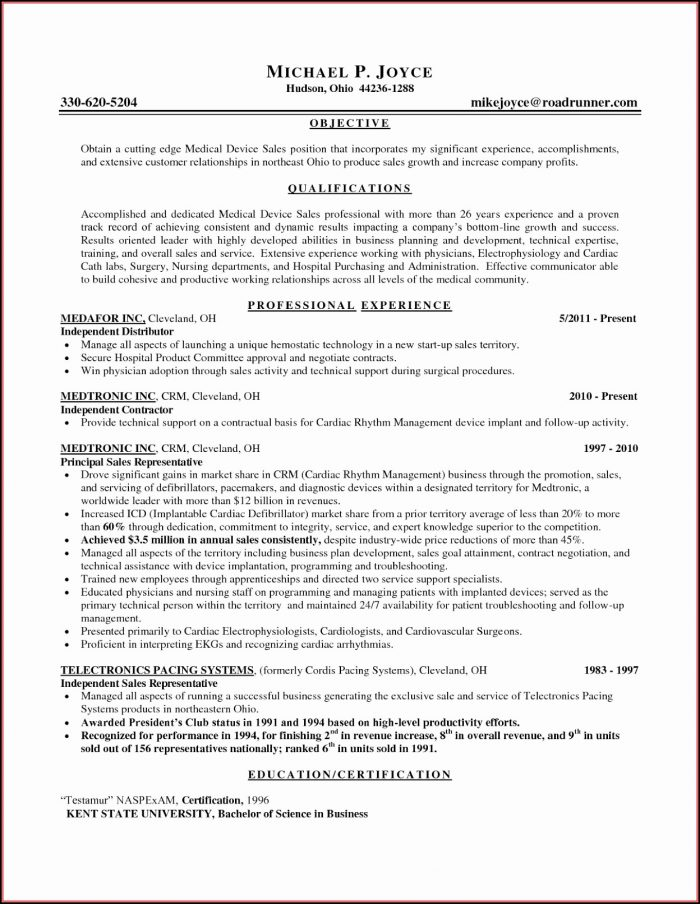 Sample Resumes Sales Jobs