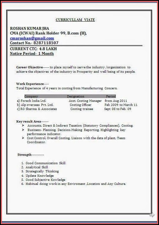 Standard Resume Format Doc Download