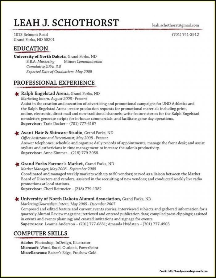 Traditional Resume Template Free Download