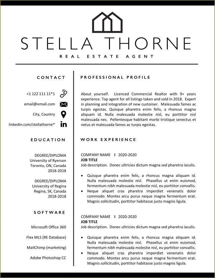 Cv Template Real Estate Agent