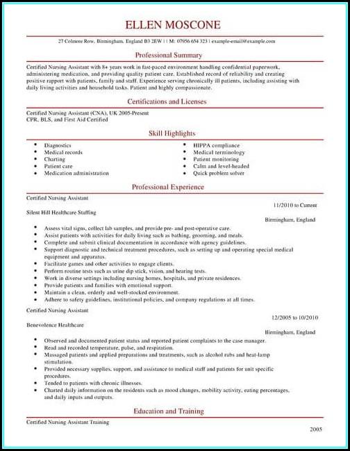 Nursing Assistant Cv Template