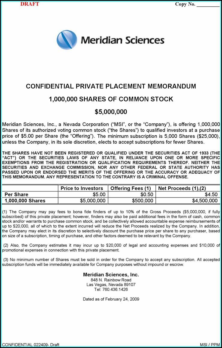 Private Placement Memorandum Format - Template 1 : Resume