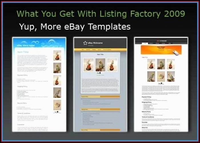 Best Ebay Seller Templates