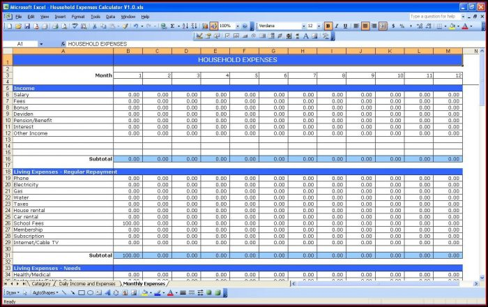 Daily Income And Expenses Excel Template