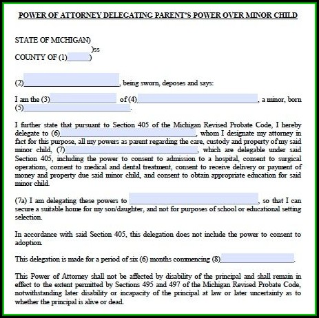 Guardianship Power Of Attorney Form