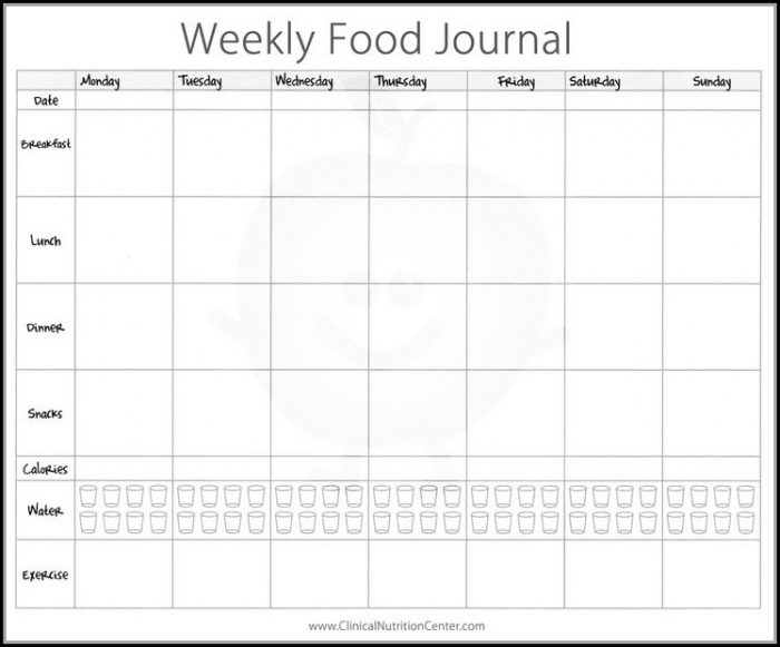 Fitness Journal Template Pdf