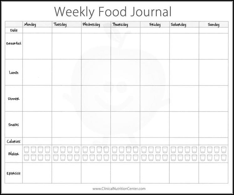 Fitness Journal Template Pdf
