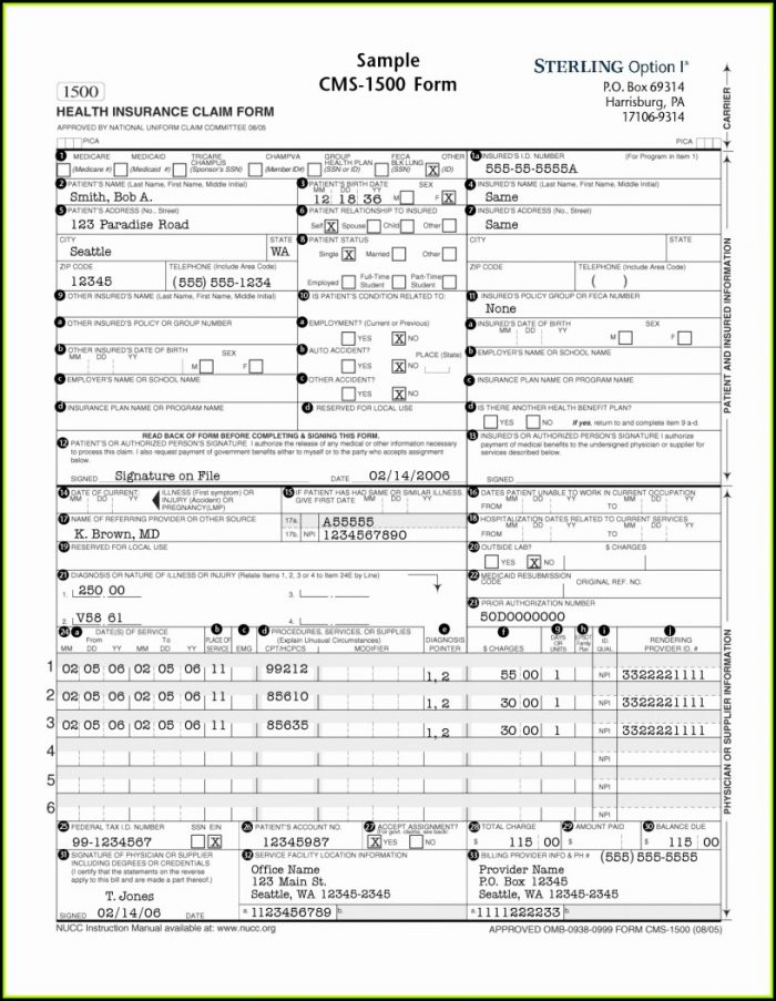 Sample Hcfa 1500 Claim Form Instructions