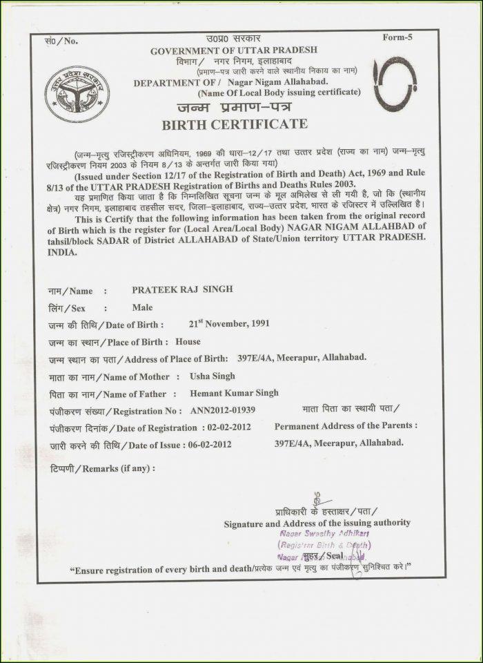Travel State Gov Passport Forms Ds 11