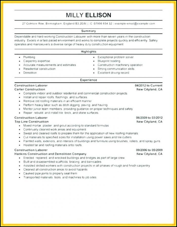 Apprentice Carpenter Resume Template