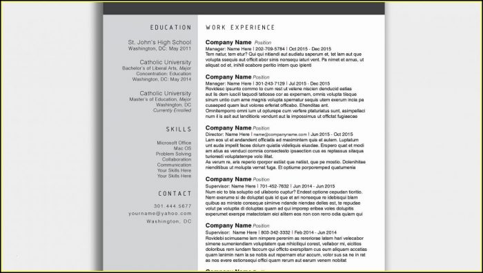 Completely Free Resume Template Download