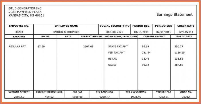 Free Pay Stub Template For Independent Contractor