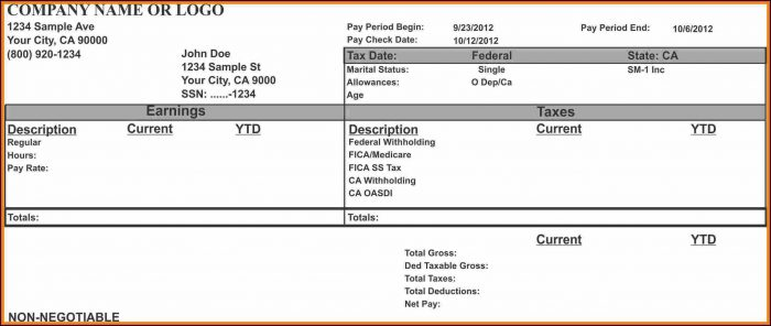 Free Pay Stub Template Word