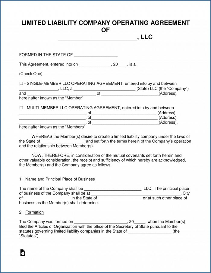 Multi Member Llc Operating Agreement Template Pdf