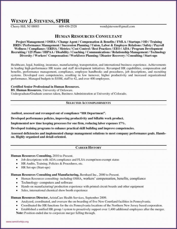 Pharmaceutical Sales Rep Business Plan Template