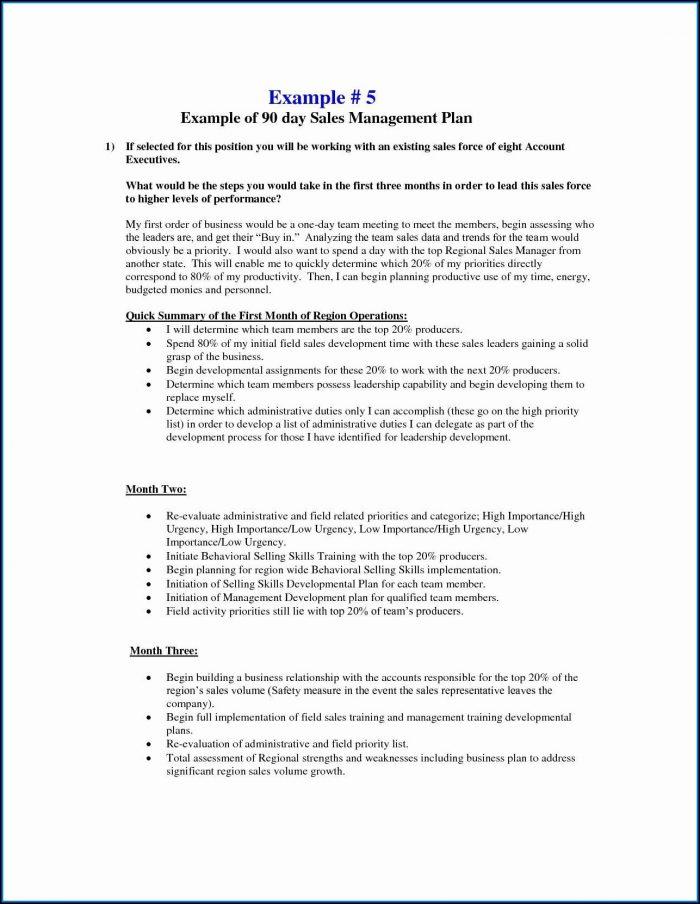 Sales Rep Business Plan Template