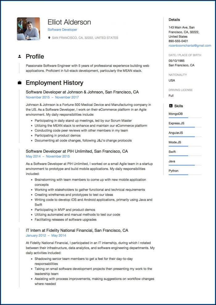 Software Resume Template Word
