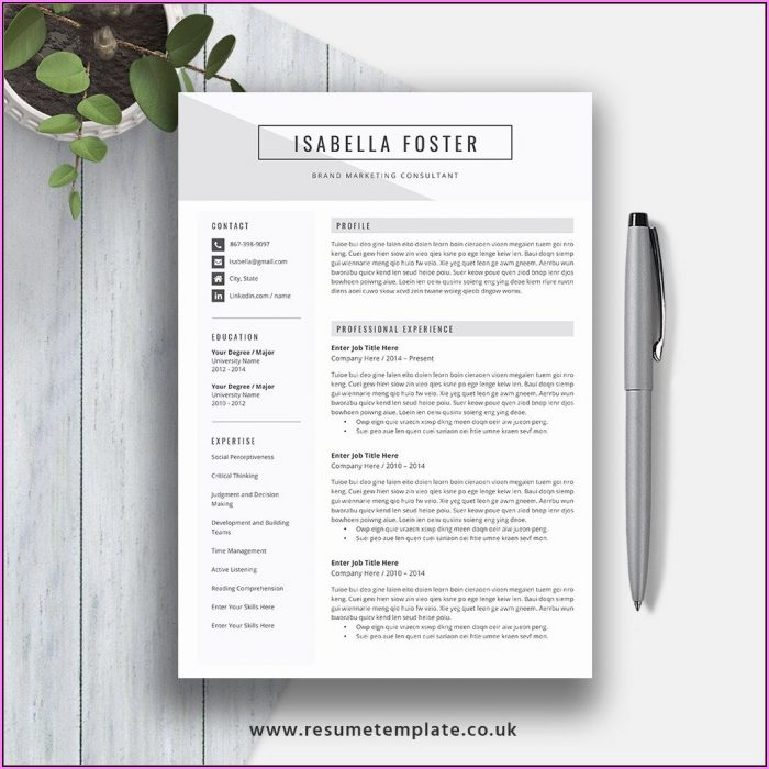 Ready Made Resume Download