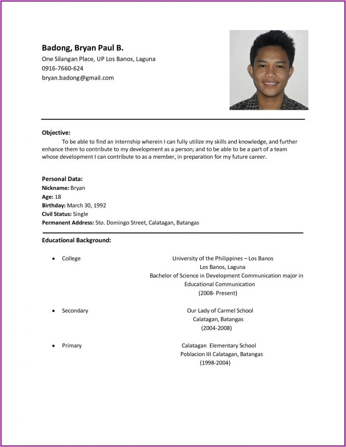 Resume Format Examples For Job Application