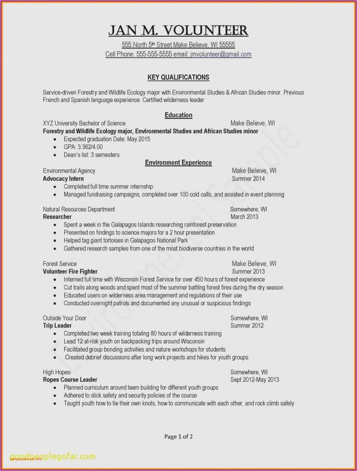Resume Formatting Examples