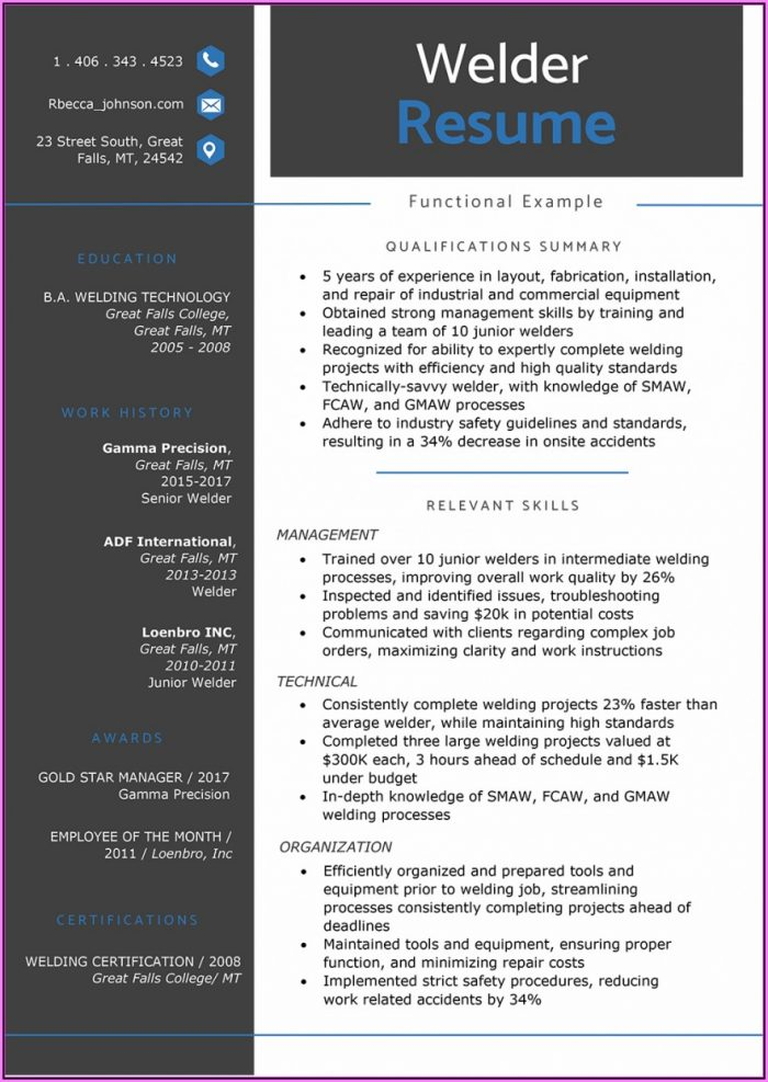 Resume Styles Examples