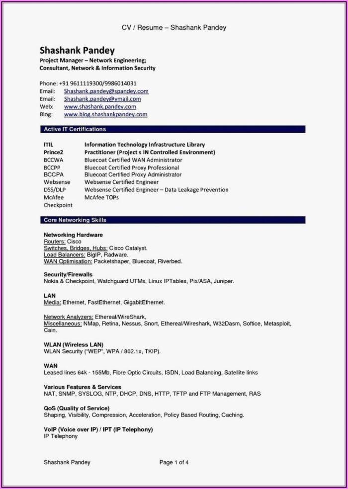 Resume Template Blank Pdf