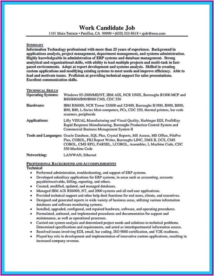 Resume Template For Professionals