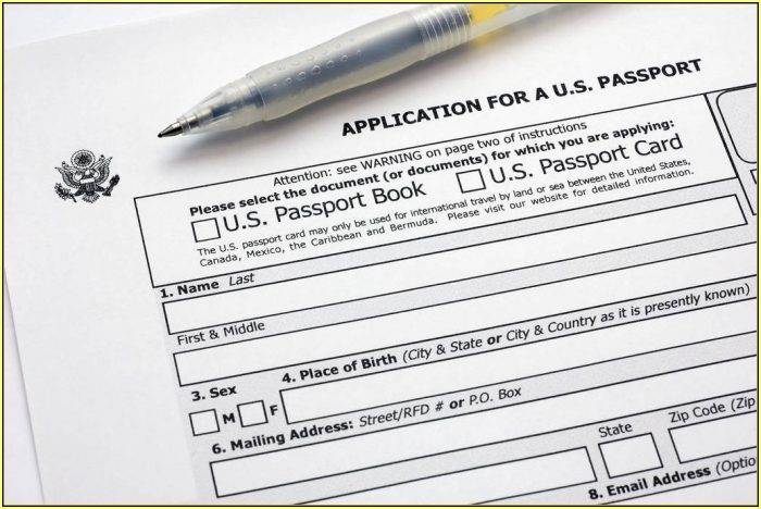 United States Child Passport Renewal Form